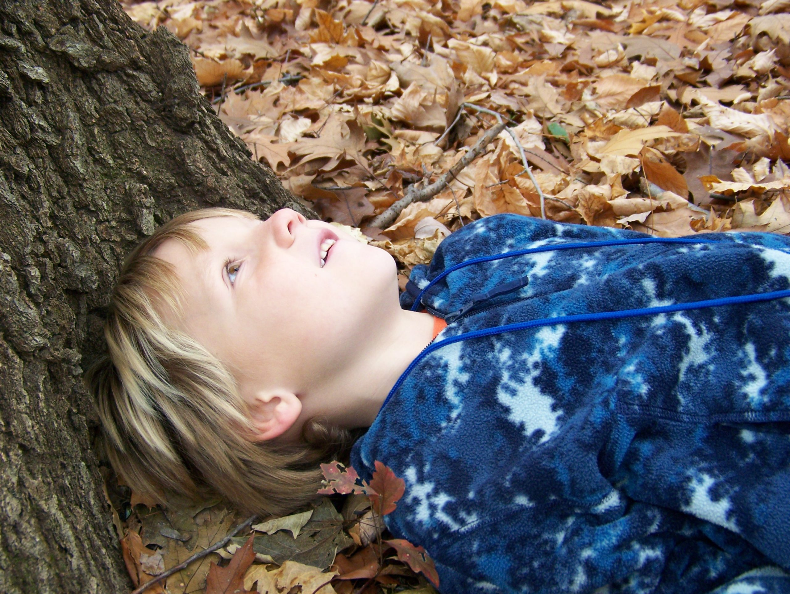 Magic Spot kids outside in the woods fall