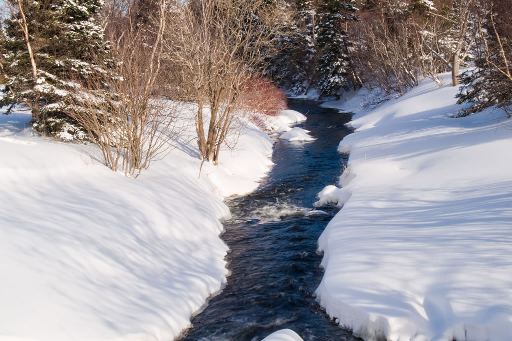 Blandford Nature Center Creek in Winter