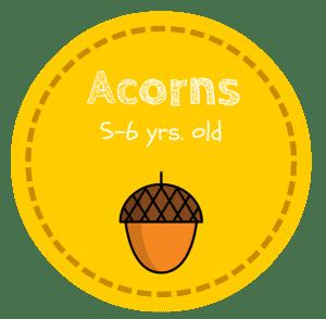 HS Acorn Button
