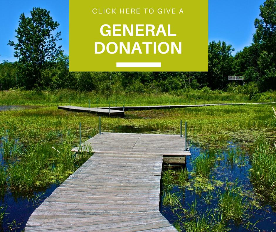 Website Button - General Fund