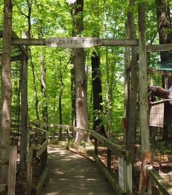 wildlife trail outside hike