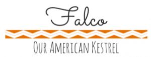falco tag