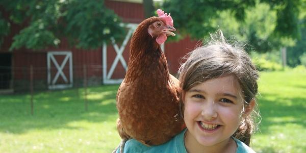 girl chicken