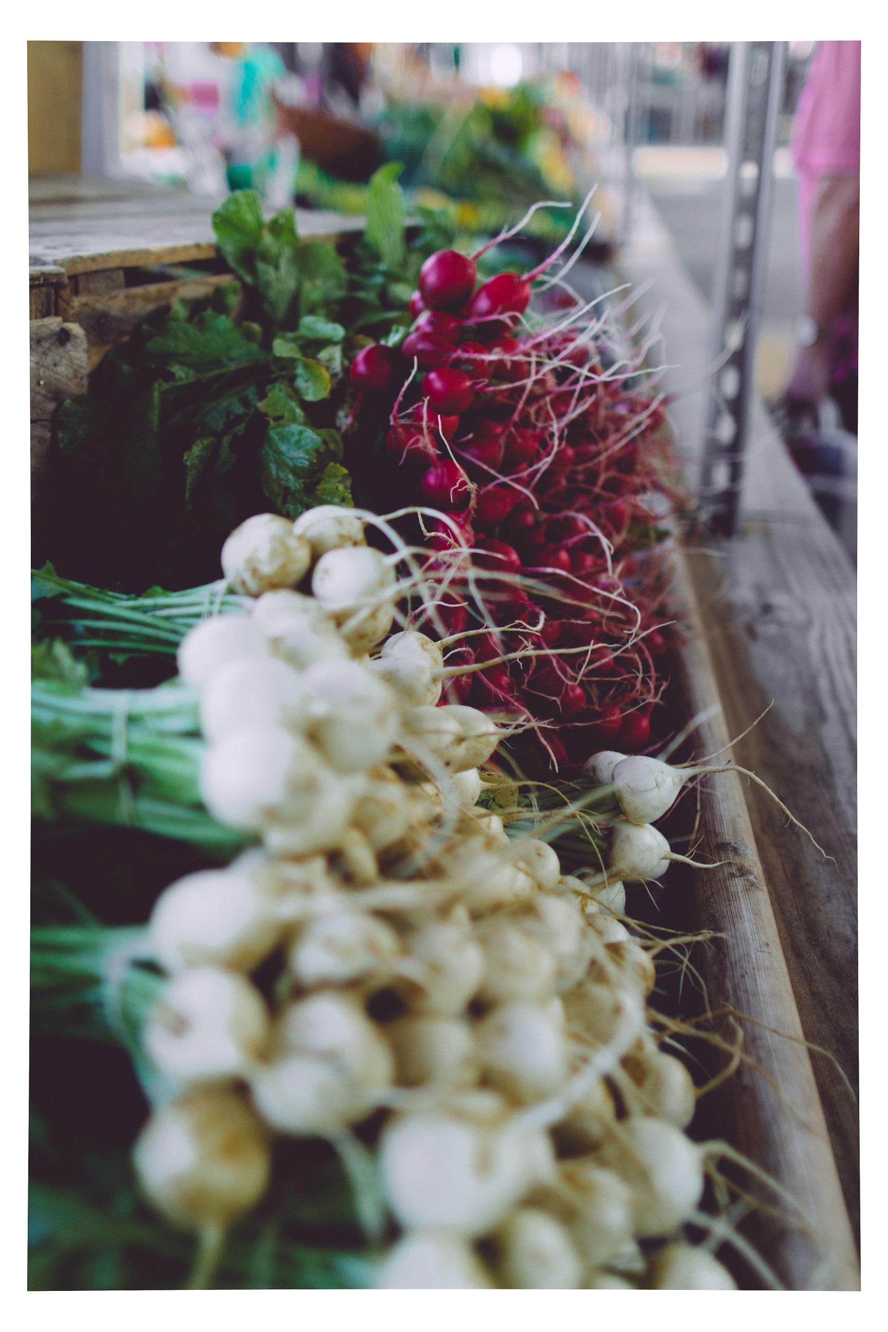 Vegetables from Blandford Farm