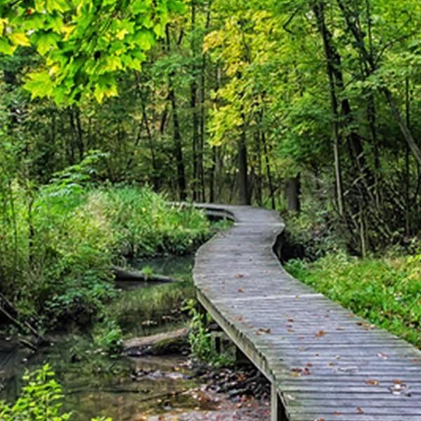 hike the trails2