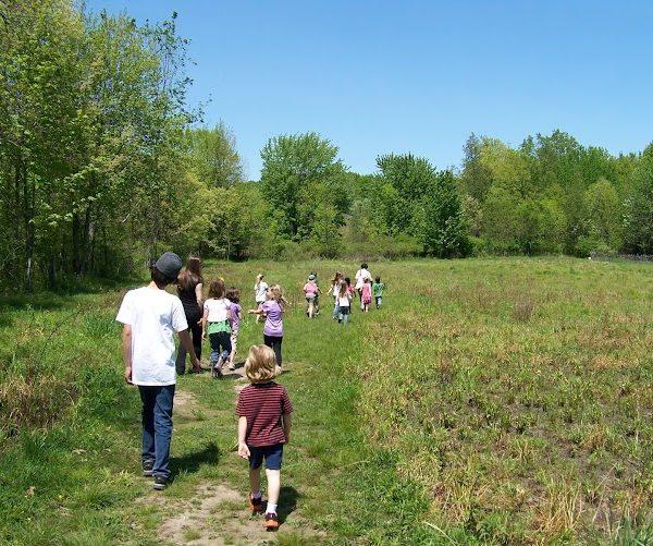 Meadow class 2012