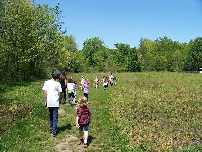 Meadow class