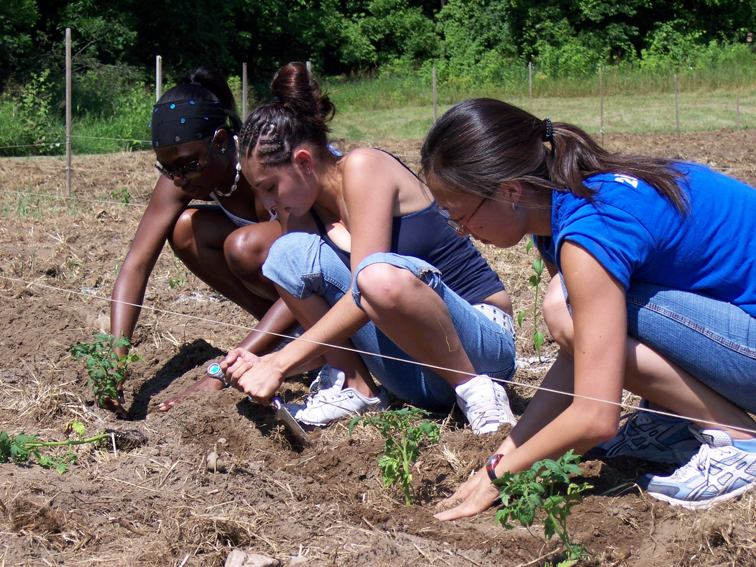 kids garden planting