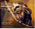 #WhyBNC…What does it mean to be a Blandford Neighbor?