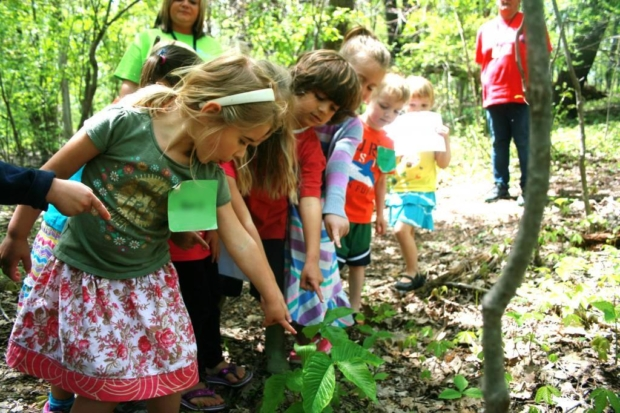 Growing up Wild and Project Learning Tree Workshop