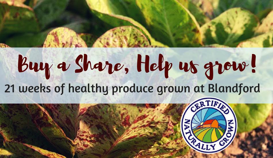 buy a farm share