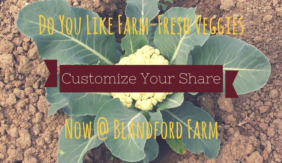 farm-share