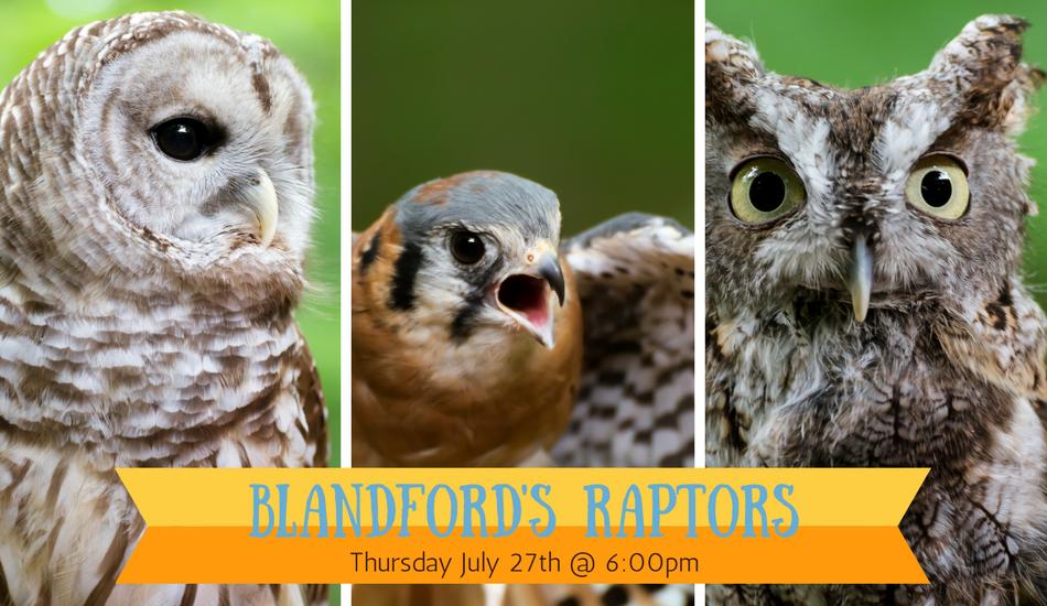 blandford's raptors
