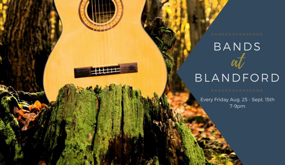 Bands at Blandford