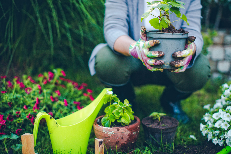 proud gardener