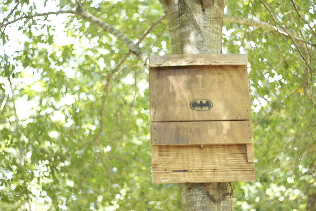 batman bat house
