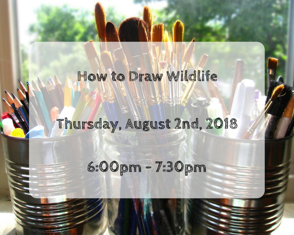 How to Draw Wildlife