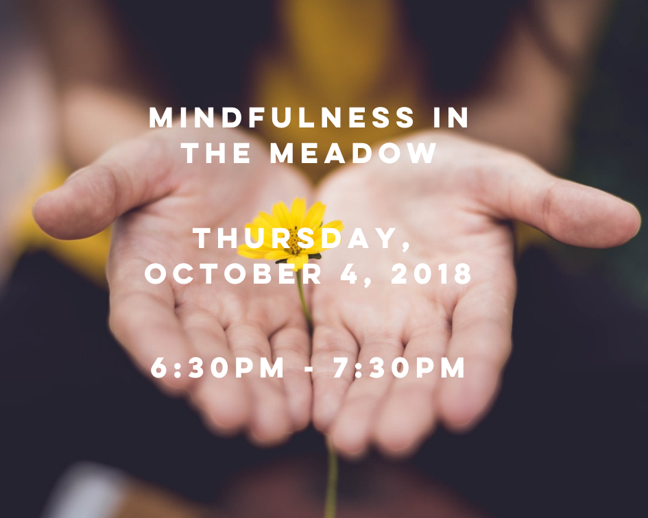 Mindfulness in Meadow