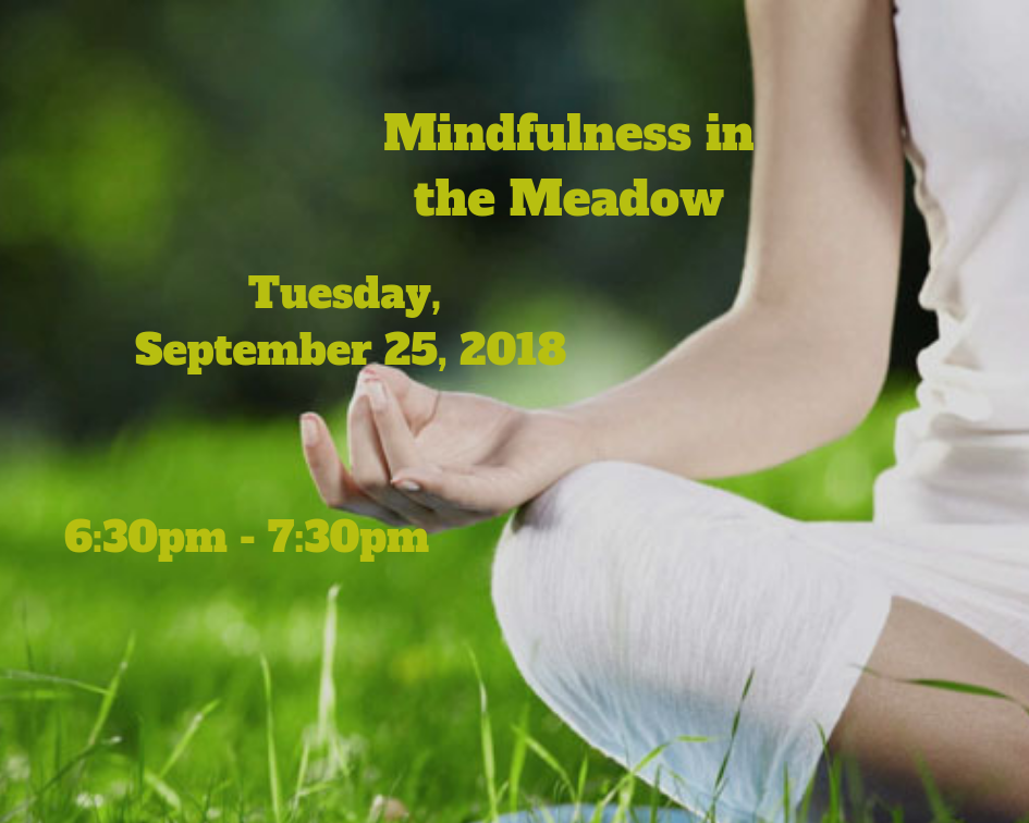 Mindfulness in the Meadow