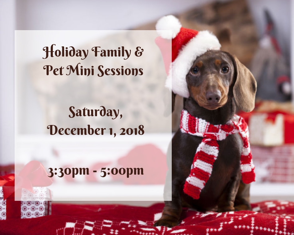 Holiday Family & Pet Mini Sessions