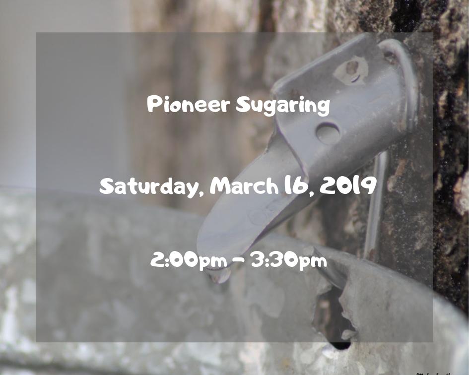 Pioneer Sugaring