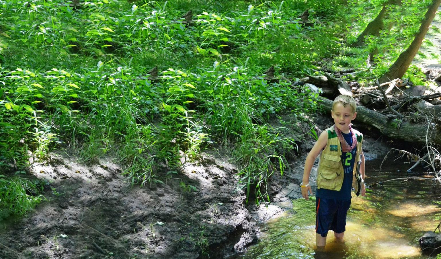 Boy in Creek