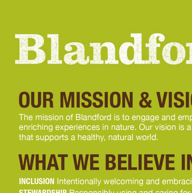 Blandford at a glance