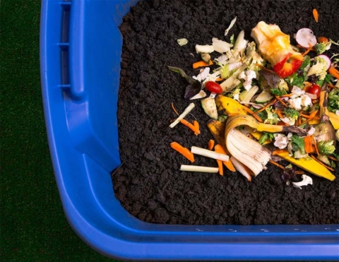 Composting 101: Adults: CANCELLED