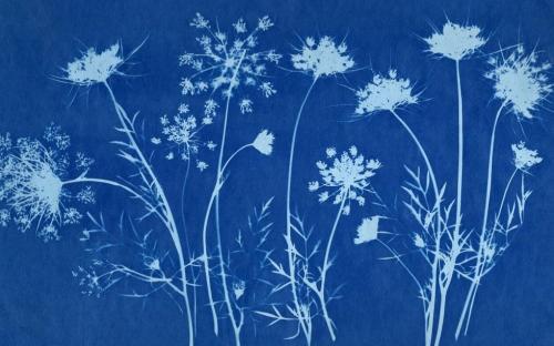 Cyanotype textile