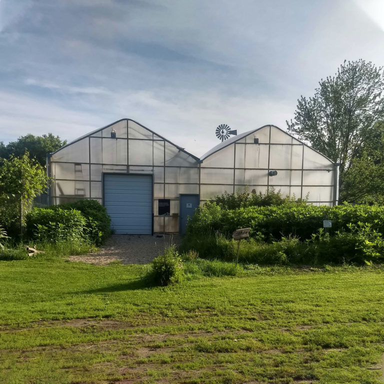 Blandford Farm
