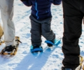 Snowshoe Night Hike – Family Edition – SOLD OUT