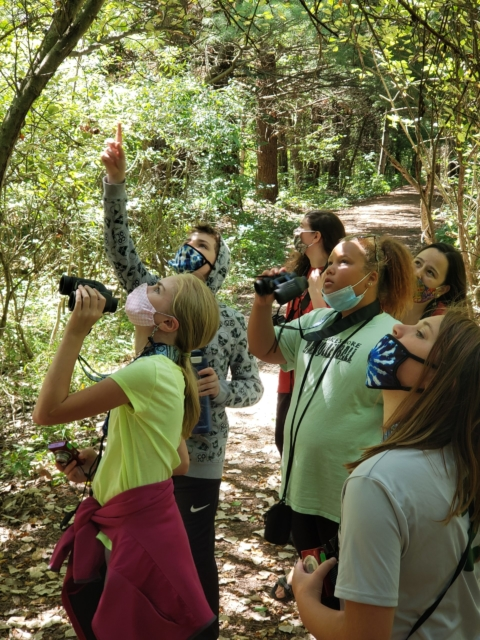 Fall Nature Discovery: Birds