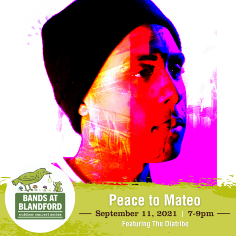 Bands at Blandford | Peace to Mateo featuring The Diatribe