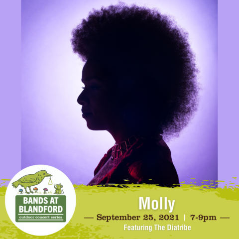 Bands at Blandford | Molly featuring The Diatribe